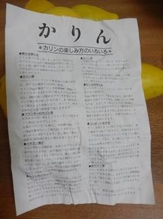 DSCN4947_mo.JPG